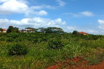 MUGUTHA PLOTS FOR SALE